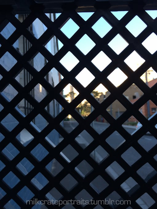 The world through the eyes of a milk crate