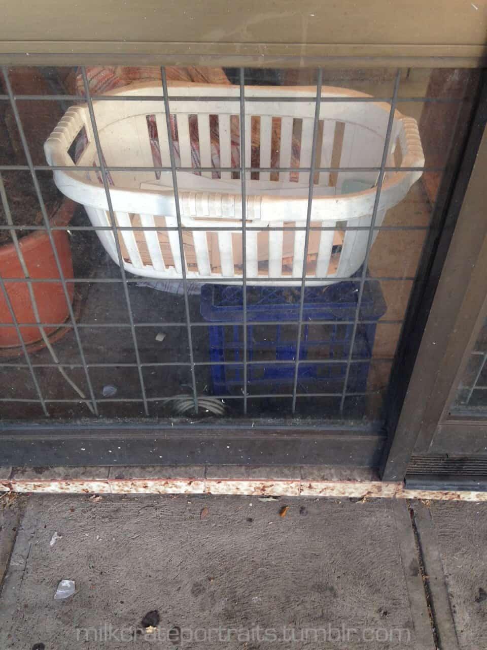 Junk shop milk crate
