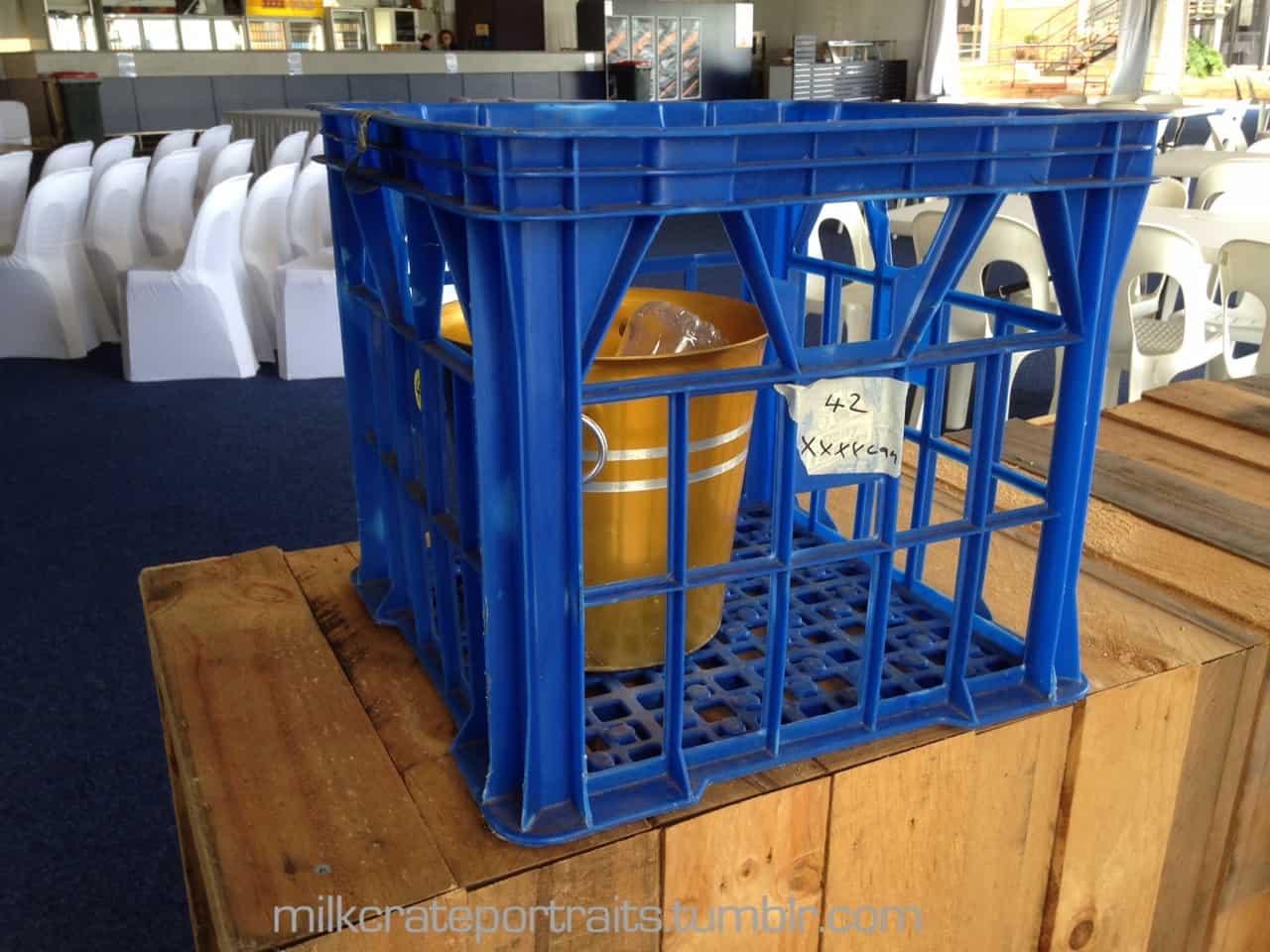 Ice bucket milk crate